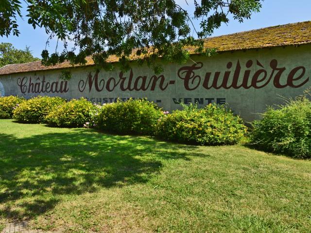 LES VAILLANT Château Morlan-Tuilière - en Biodynamie